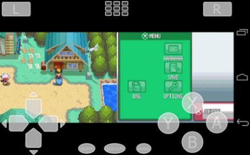 DS Emulator